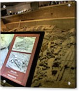 Terra Cotta Warriors In Pit 3 Ruins With Diagram Acrylic Print