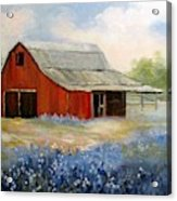 Texas Blue Bonnets And Red Barn Acrylic Print