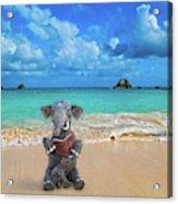 The Beach Story Acrylic Print