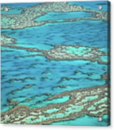 The Big Reef, Whitsunday Islands Acrylic Print