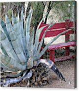 The Little Red Bench Acrylic Print