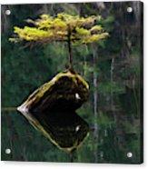 The Little Tree On Fairy Lake 5 Acrylic Print