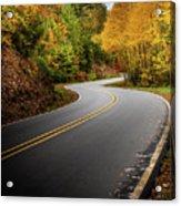 The Mountain Road Acrylic Print