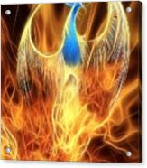 The Phoenix Rises From The Ashes Acrylic Print