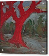 The Three Primary Colors Are The Unchanging Center Of The Stories Acrylic Print
