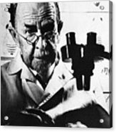 Thomas Hunt Morgan With Microscope Acrylic Print
