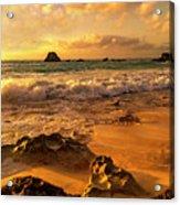 Thoughtful Morning Golden Coastal Paradise  Acrylic Print
