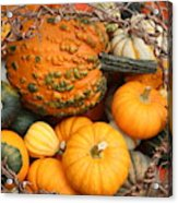 Time For Fall Acrylic Print