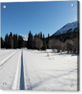 Tire Tracks In Snow In An Isolated Area Of The Kenai Peninsula Acrylic Print
