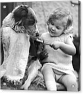 Toddler Trying To Brush Dogs Teeth.  P Acrylic Print