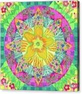 Tom's Squash Blossom Acrylic Print