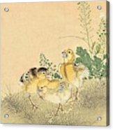 Top Quality Art - Keinen Kachoshokan 12view 3 Acrylic Print