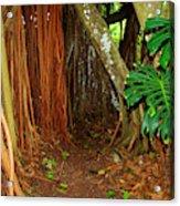 Tropical Corner Acrylic Print