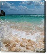 Tropical Fantastic View Acrylic Print