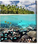 Tropical Paradise - The Maldives Acrylic Print