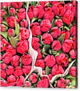 Tulips For Sale At A Flower Market Acrylic Print