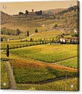 Tuscany Farmhouse And Vineyard In Fall Acrylic Print
