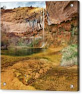 Upper Calf Creek Falls Utah Acrylic Print