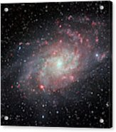 Very Detailed View Of The Triangulum Galaxy Acrylic Print