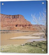 View From A Cabin At Sorrel River Ranch On The Colorado River Ne Acrylic Print