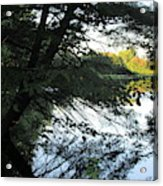 View Of The Lake Through The Branches Acrylic Print
