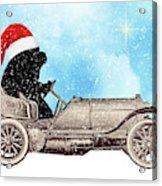 Vintage Santa Newf Holiday Card Acrylic Print