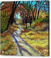 Walk This Way Acrylic Print