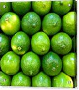 Wall Of Limes Acrylic Print
