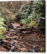 Washington Creek Acrylic Print
