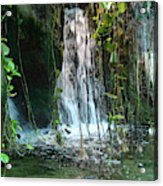 Water Feature  Acrylic Print