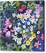 Watercolor - Alpine Wildflower Design Acrylic Print