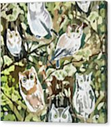 Watercolor - Screech Owl And Forest Design Acrylic Print