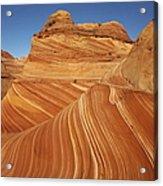 Wave, Paria Canyon Acrylic Print