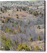West Dakota Prairie Reverie Acrylic Print