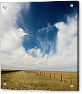 West Texas Grasslands United States Of Acrylic Print