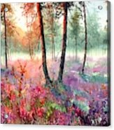 When Heathers Bloom Acrylic Print