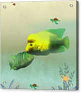 Whimsical Fish Acrylic Print