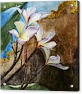 White Flower With Abstract Background Acrylic Print