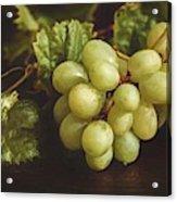 White Grapes Acrylic Print