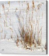 Whitehorse Winter Landscape Acrylic Print