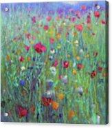 Wild Meadow Acrylic Print