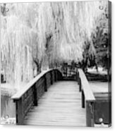 Willow Tree Over The Bridge Acrylic Print