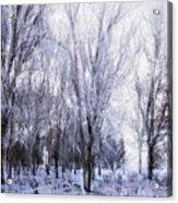 Winter Lace Acrylic Print
