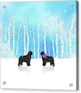Winter Romance Acrylic Print