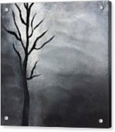 Winter Tree At Night.  Acrylic Print