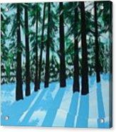 Winter's Spell Acrylic Print