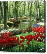 Woods And Stream, Keukenhof Gardens Acrylic Print