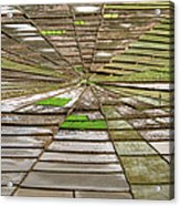 Working The Spiderwebs Acrylic Print