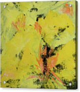 Yellow Blooms Coral Accents Acrylic Print