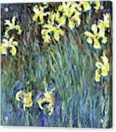 Yellow Irises - Digital Remastered Edition Acrylic Print